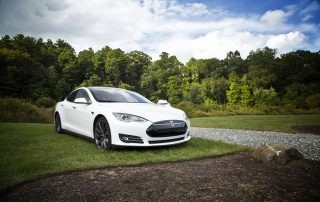 A white Tesla car parked on the grass in front of a tree grove